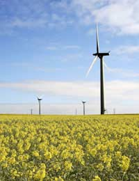 Green Energy and Carbon Footprints