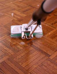 Eco-Friendly Cleaners for Hard Floors