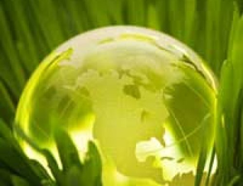 Green Energy in Nayland: Case Study