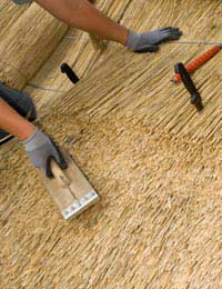Insurance and Mortgage Issues: Wood & Straw Build