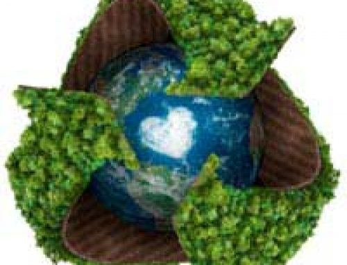 International Carbon Emissions: Some Facts and Figures