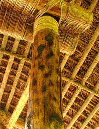 Sustainable Buildings Using Bamboo Construction